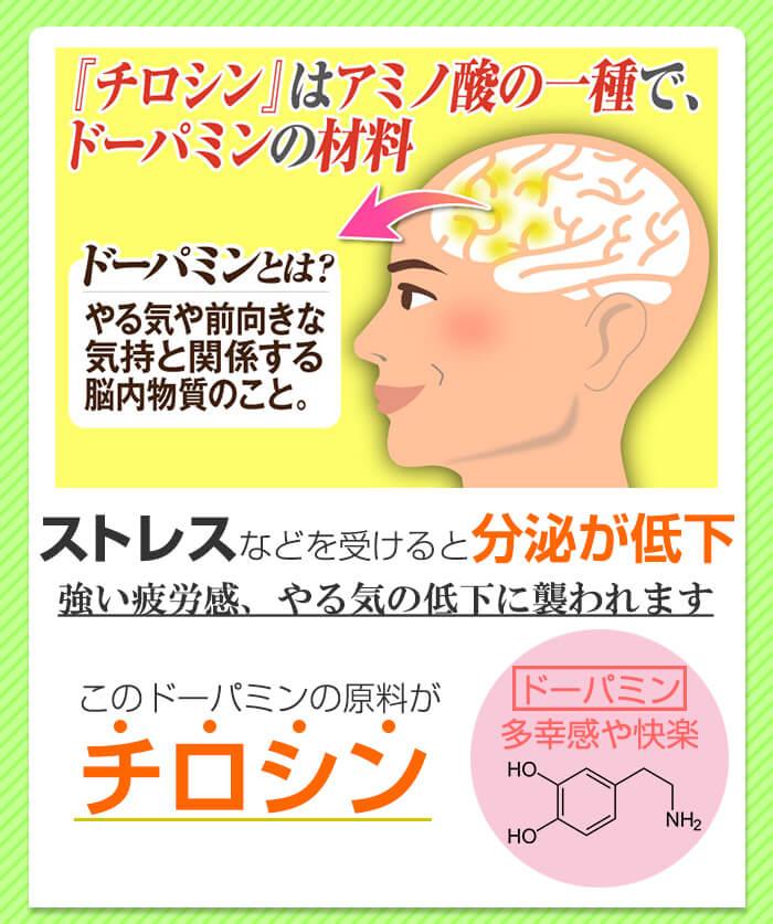 チロシンはアミノ酸の一種でドーパミンの材料